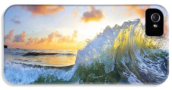 Ocean Bouquet IPhone 5 / 5s Case by Sean Davey
