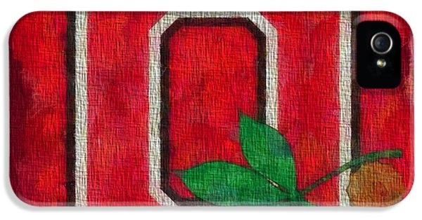 Basketball iPhone 5 Case - Ohio State Buckeyes On Canvas by Dan Sproul