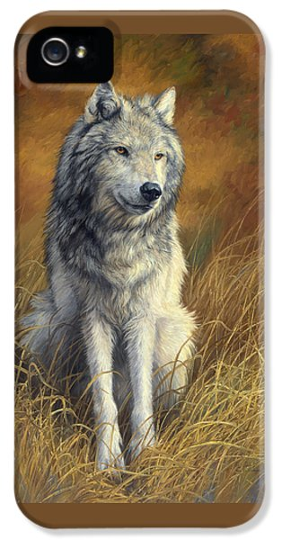 Old And Wise IPhone 5 / 5s Case by Lucie Bilodeau