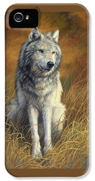 Old And Wise IPhone 5 Case by Lucie Bilodeau