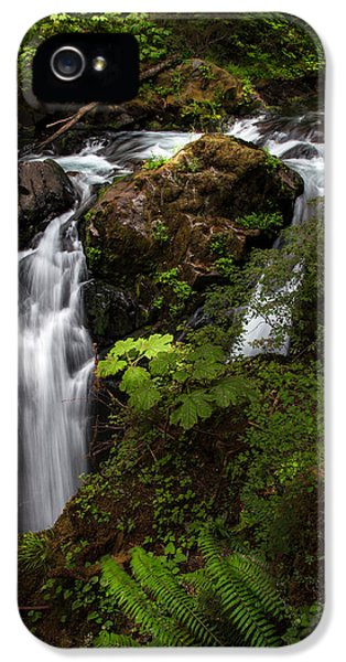 Olympic National Park IPhone 5 Case by Larry Marshall