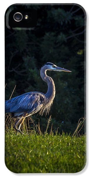 On The March IPhone 5 Case