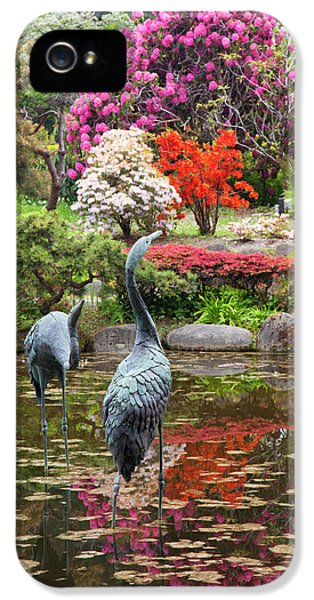 Or, Shore Acres State Park, Shore Acres IPhone 5 Case by Jamie and Judy Wild