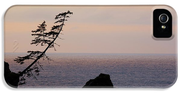 Or, Shore Acres State Park, View IPhone 5 Case by Jamie and Judy Wild