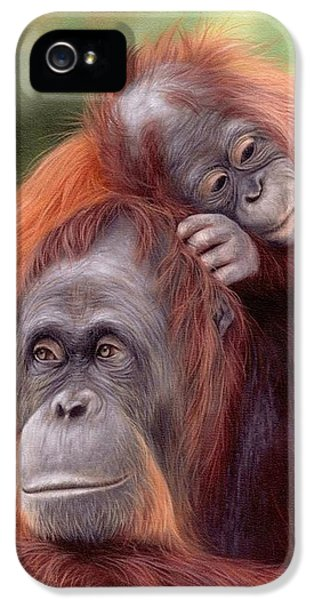 Orangutans Painting IPhone 5 Case by Rachel Stribbling