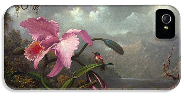 Orchid And Hummingbir IPhone 5 Case