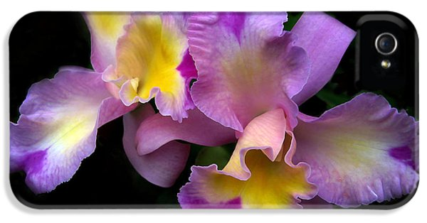Orchid Embrace IPhone 5 Case