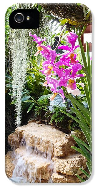 Orchid Garden IPhone 5 / 5s Case by Carey Chen
