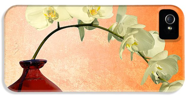 Orchids 2 IPhone 5 Case by Mark Ashkenazi