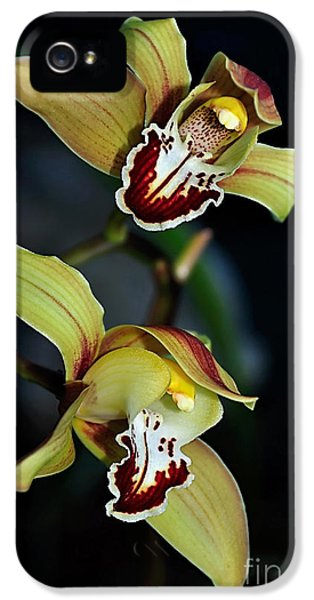 Orchids In The Evening IPhone 5 / 5s Case by Kaye Menner