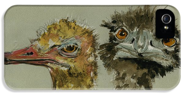 Ostrichs Head Study IPhone 5 Case by Juan  Bosco
