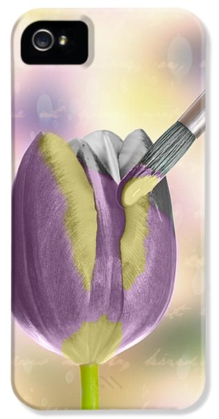 Painting A Tulip IPhone 5 Case by Amanda Elwell