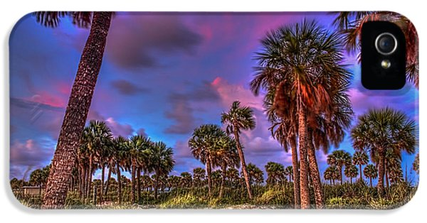 Palm Grove IPhone 5 Case by Marvin Spates