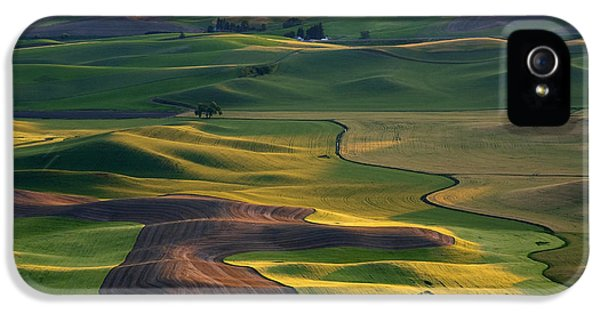 Rural Scenes iPhone 5 Case - Palouse Shadows by Mike  Dawson