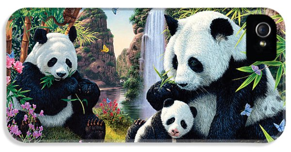 Panda Valley IPhone 5 Case by Steve Read