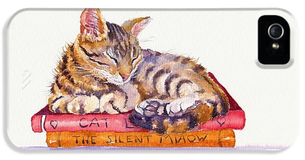 Cat iPhone 5 Case - Paperweight by Debra Hall