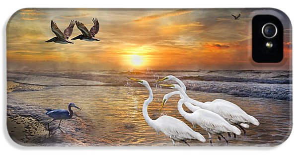 Paradise Dreamland  IPhone 5 / 5s Case by Betsy Knapp