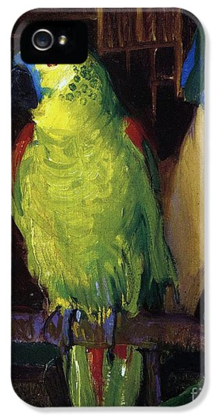 Parrot IPhone 5 Case by George Wesley Bellows
