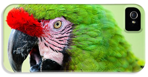 Parrot IPhone 5 Case