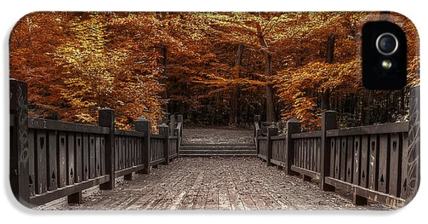 Path To The Wild Wood IPhone 5 Case by Scott Norris