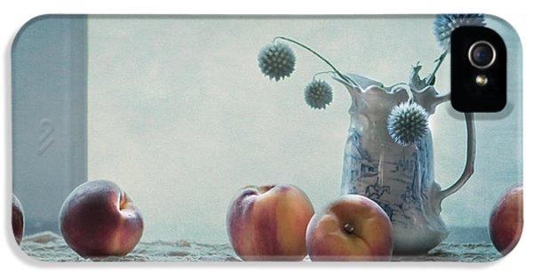 Peaches Still Life IPhone 5 Case by Maggie Terlecki