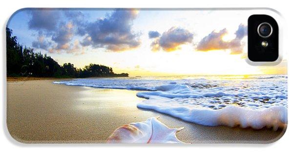 Beach iPhone 5 Case - Peaches N' Cream by Sean Davey