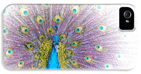 iPhone 5 Case - Peacock by Holly Kempe