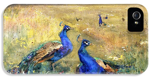 Peacocks In A Field IPhone 5 Case by Mildred Anne Butler