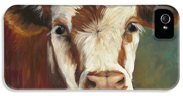 Cow iPhone 5 Case - Pearl Iv Cow Painting by Cheri Wollenberg