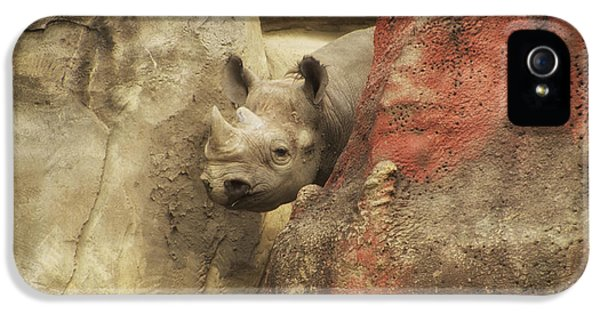 Peek A Boo Rhino IPhone 5 Case by Thomas Woolworth