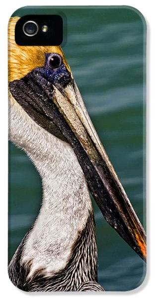 Pelican Profile No.40 IPhone 5 Case by Mark Myhaver