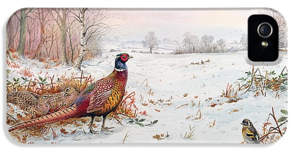 Pheasant And Bramblefinch In The Snow IPhone 5 Case by Carl Donner