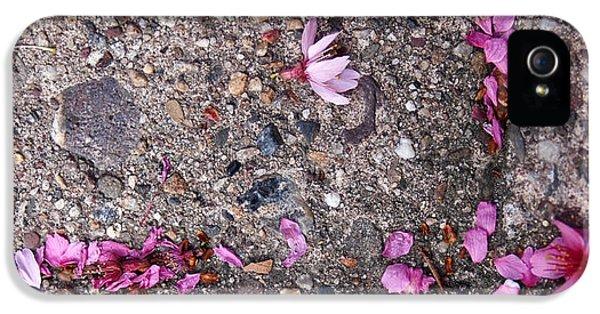 Philadelphia Street Art IPhone 5 Case