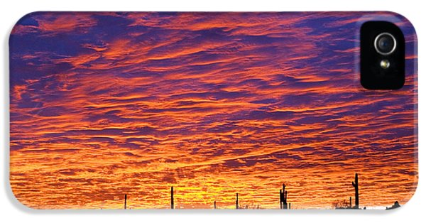 Phoenix Sunrise IPhone 5 Case