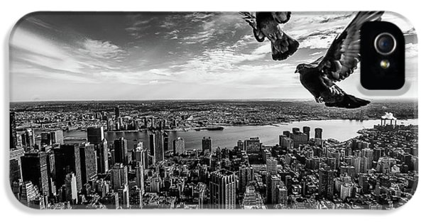 Pigeons On The Empire State Building IPhone 5 Case