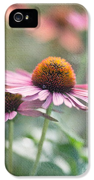 Pink Cone IPhone 5 Case