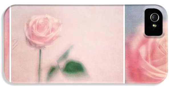 Rose iPhone 5 Case - Pink Moments by Priska Wettstein