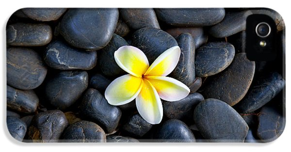 Plumeria Pebbles IPhone 5 Case by Sean Davey