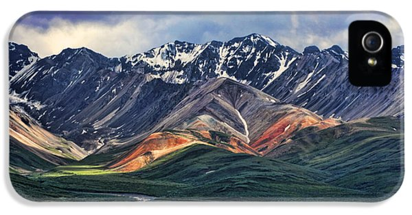 Mountain iPhone 5 Case - Polychrome by Heather Applegate