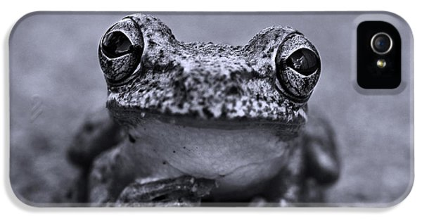Pondering Frog Bw IPhone 5 Case by Laura Fasulo
