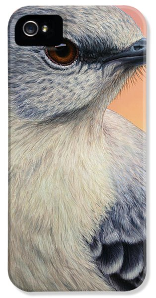 Portrait Of A Mockingbird IPhone 5 Case by James W Johnson