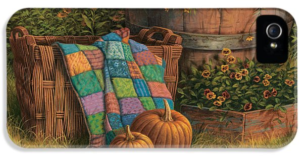 Pumpkins And Patches IPhone 5 / 5s Case by Michael Humphries