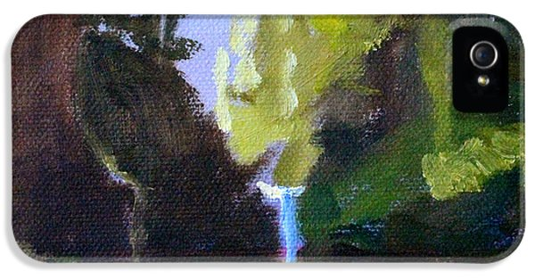 Punch Bowl Falls IPhone 5 Case