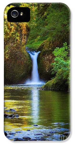 Punchbowl Falls IPhone 5 Case by Inge Johnsson
