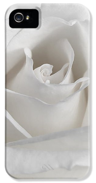 Purity Of A White Rose Flower IPhone 5 Case by Jennie Marie Schell