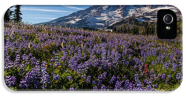 Purple Fields Forever And Ever IPhone 5 Case by Mike Reid