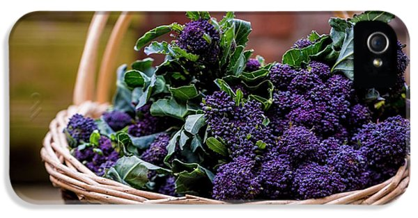 Purple Sprouting Broccoli IPhone 5 Case by Aberration Films Ltd