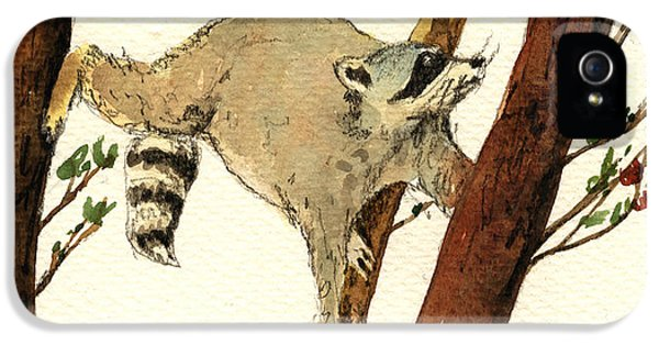 Raccoon iPhone 5 Case - Raccoon On Tree by Juan  Bosco