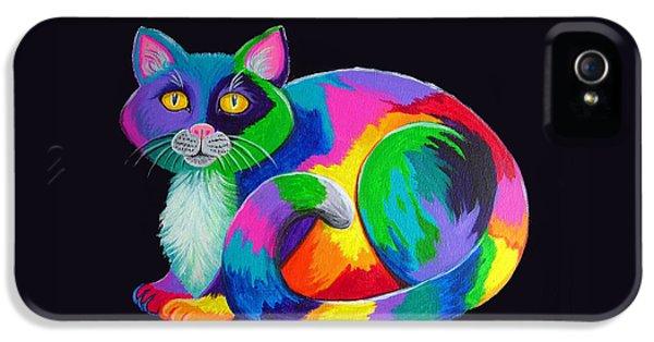 Rainbow Calico IPhone 5 Case