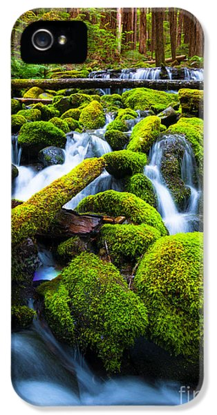 Rainforest Magic IPhone 5 Case by Inge Johnsson